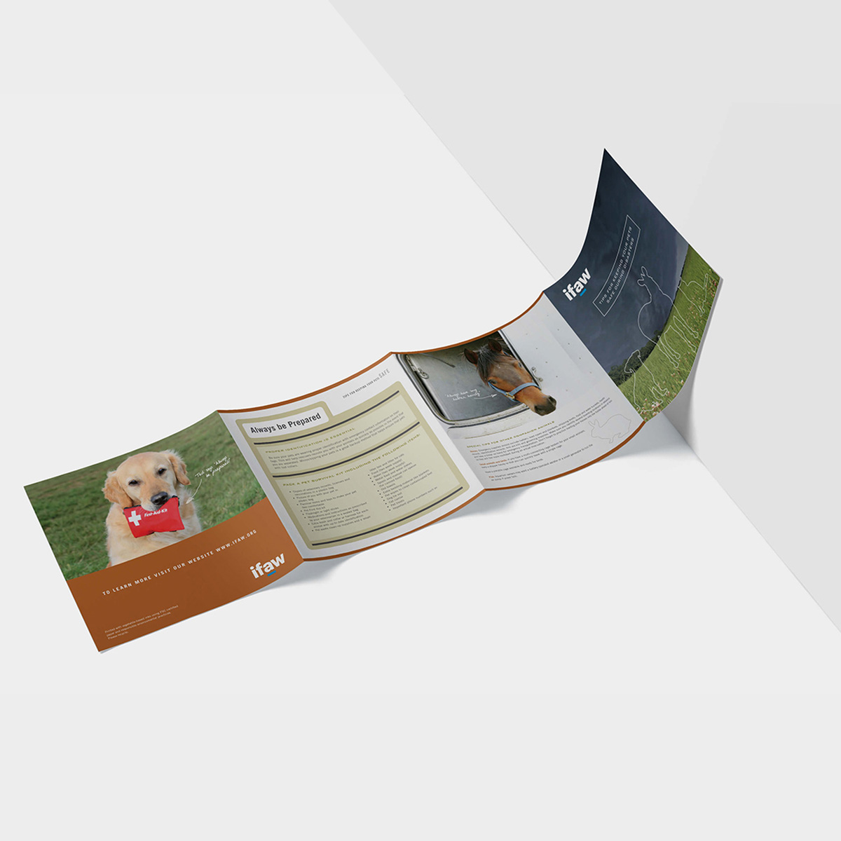 IFAW Rescue brochure spread with covers