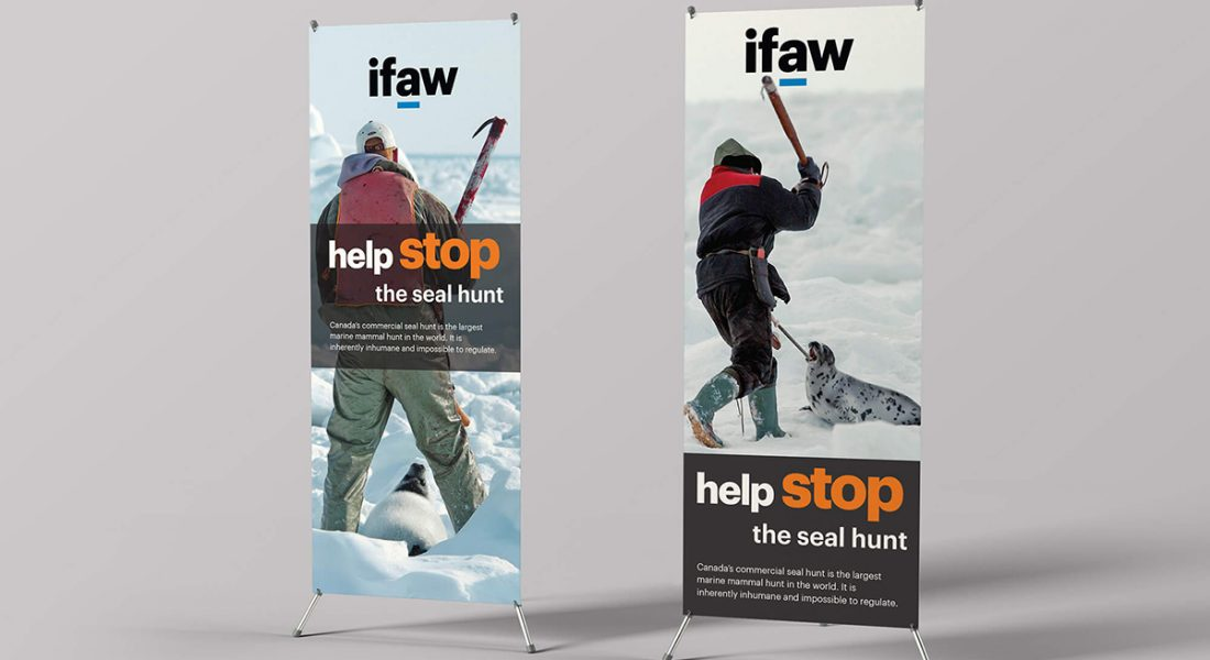 IFAW Seel hunt standing banners