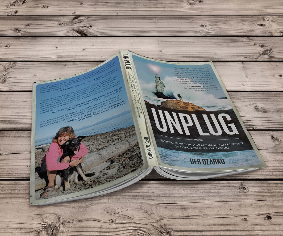 Unplug book covers