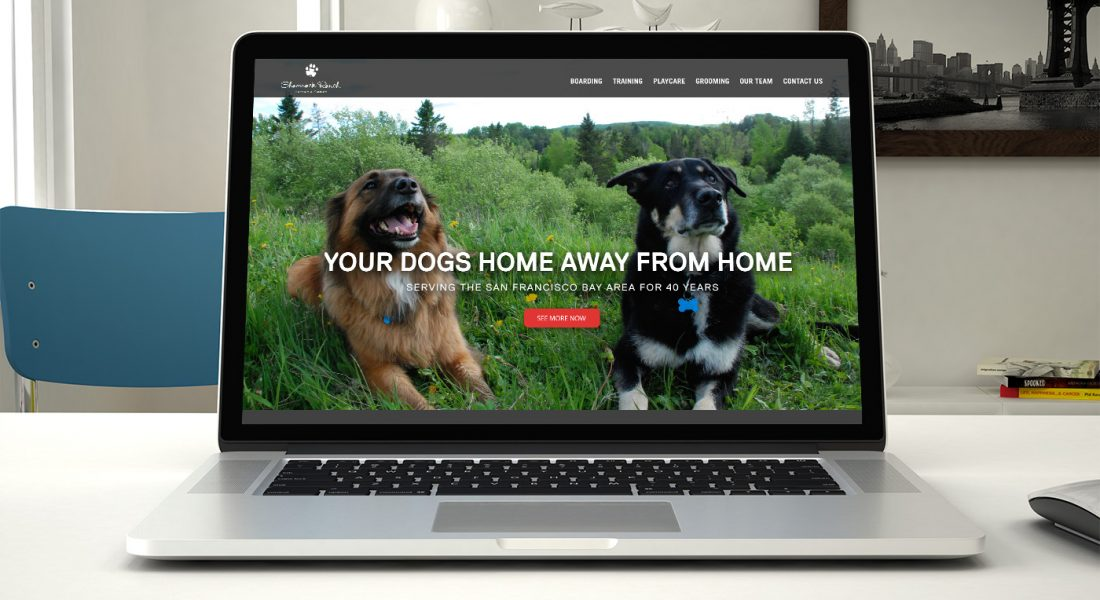 Shamrock Ranch Kennels homepage